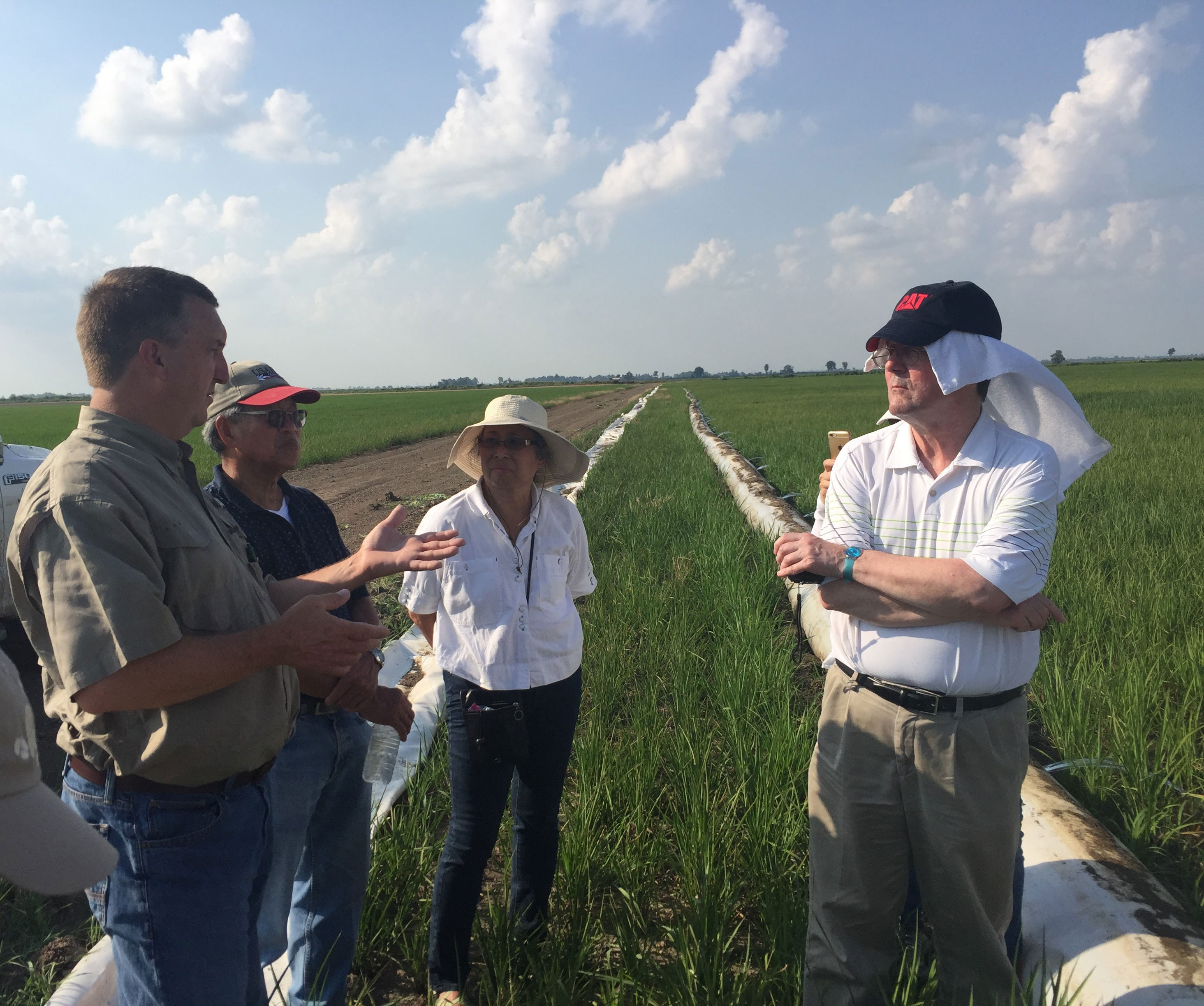 People listening to farmer talk about irrigation, standing in rice field w/water pipes