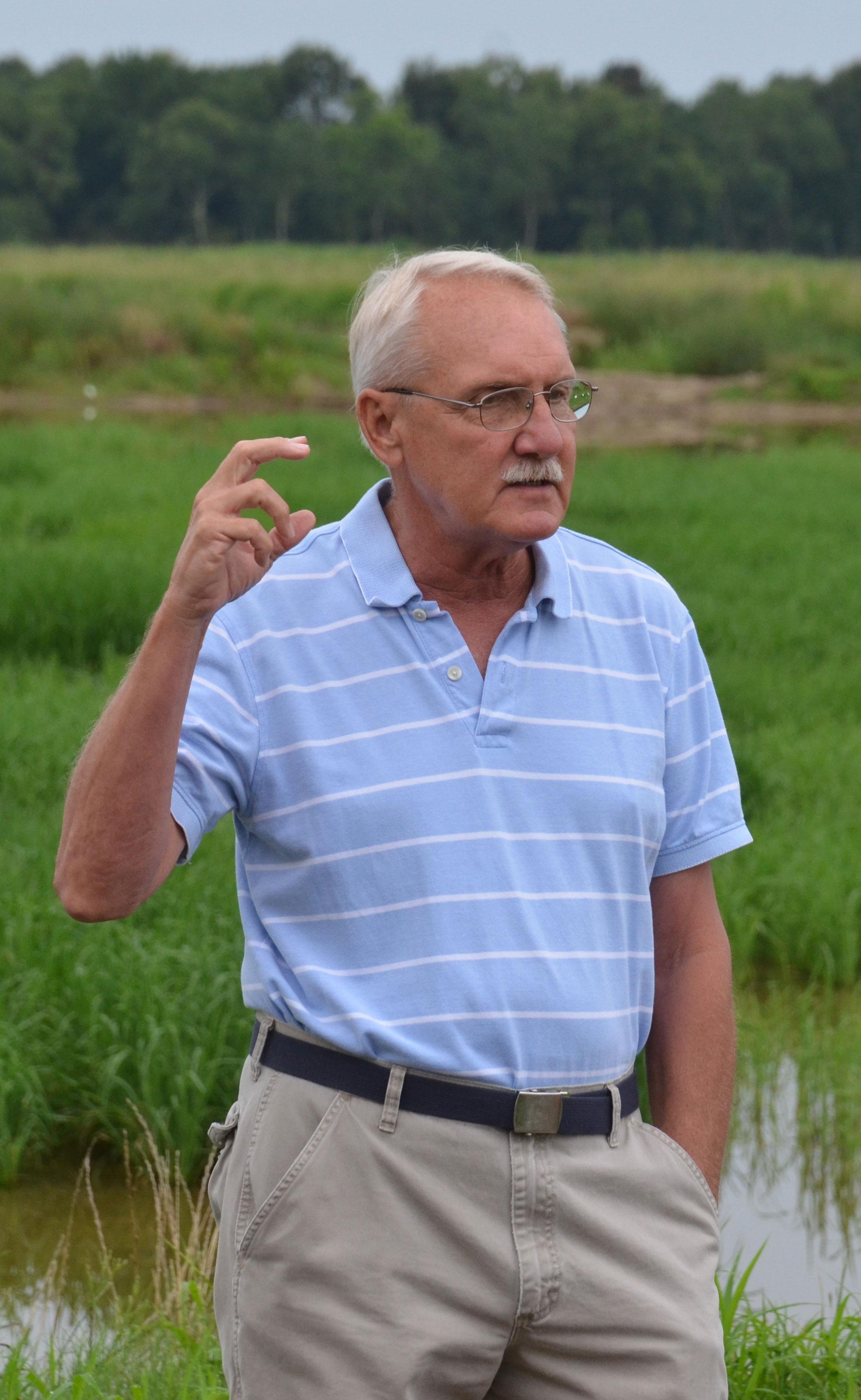 Steve-Linscombe,-LSU-image, Steve in rice field talking & gesturing